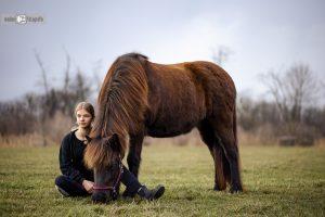 MendUndPferd